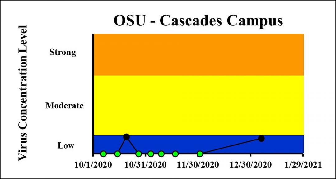 The concentration on the most recent sampling dates indicated a viral load below the detection limit on 12/1/2020 and a low viral load on 1/5/2021 at OSU-Cascades Campus