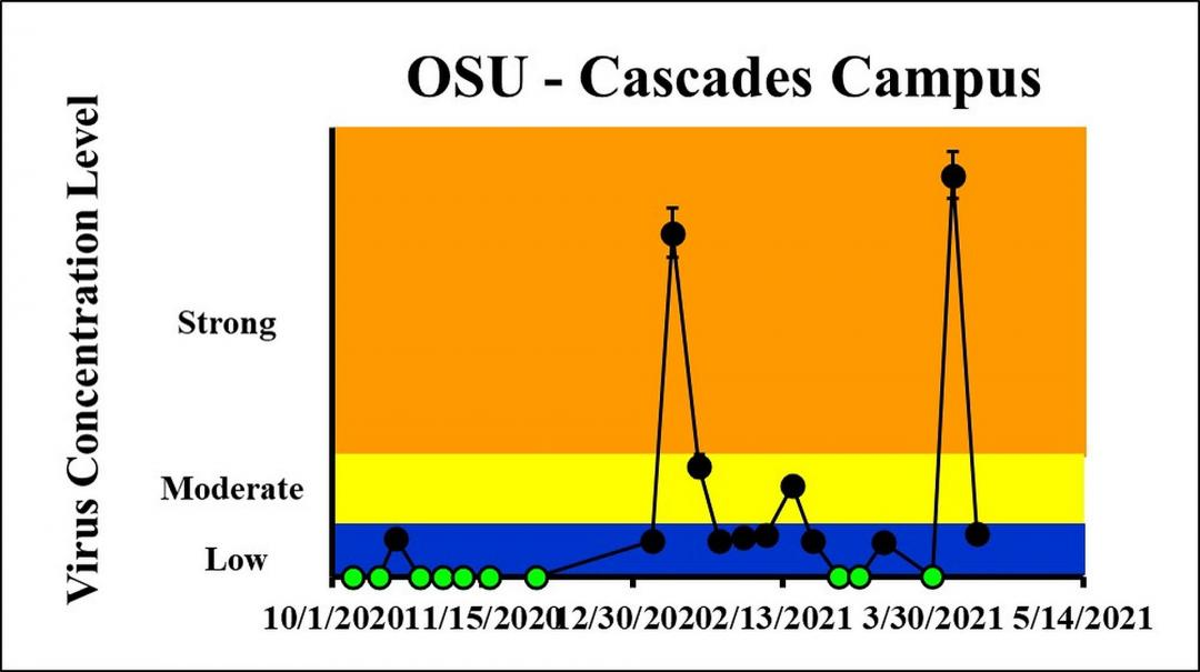 The concentration on the most recent sampling dates indicated a strong viral load on 4/5/2021 and a low viral load on 4/12/2021 at OSU-Cascades Campus