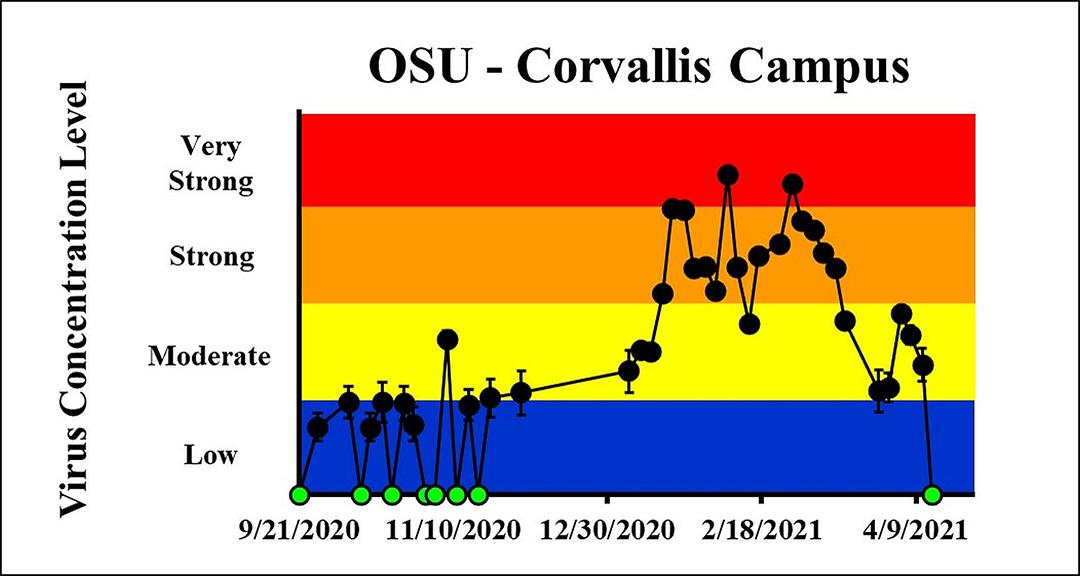 The concentration on the most recent sampling dates indicated a moderate viral load on 4/11/2021 and a viral load below the detection limit on 4/13/2021 at OSU Corvallis Campus