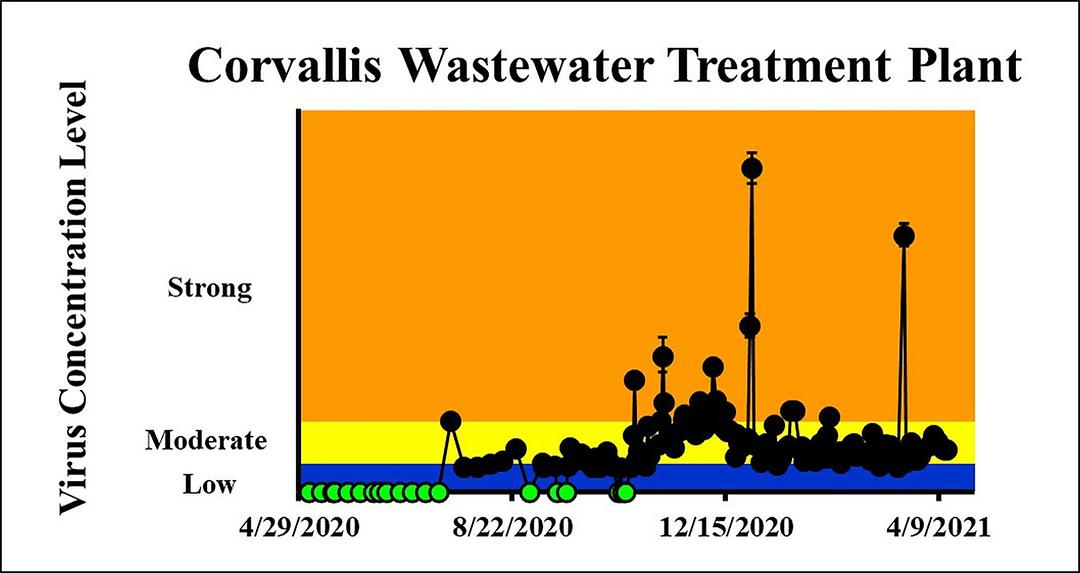The concentration on the most recent sampling dates (4/12/2021 and 4/13/2021) indicated a moderate viral load in the City of Corvallis