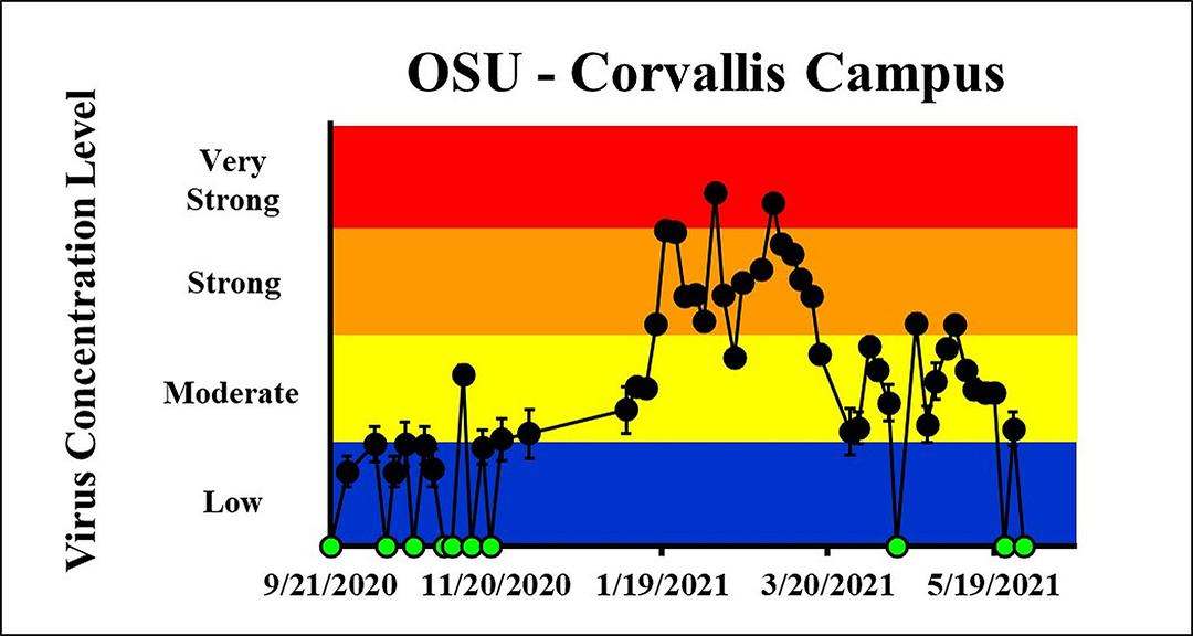 The concentration on the most recent sampling dates indicated a moderate viral load on 5/26/2021 and a viral load below the detection limit on 5/30/2021 at OSU Corvallis Campus