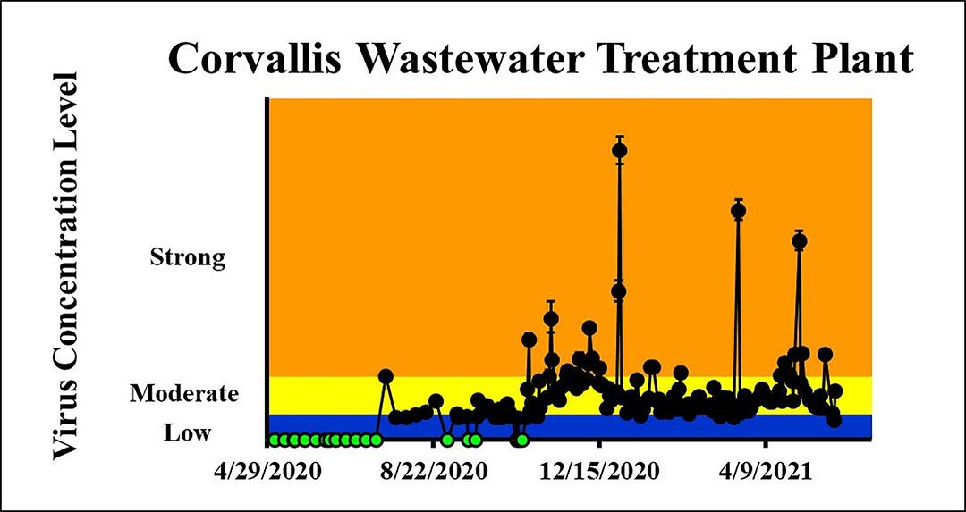 The concentration on the most recent sampling dates indicated a low viral load on 5/26/2021 and a moderate viral load on 5/27/2021 in the City of Corvallis